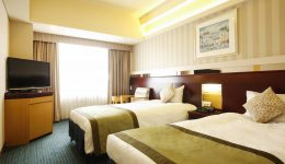 Standard Twin Room New