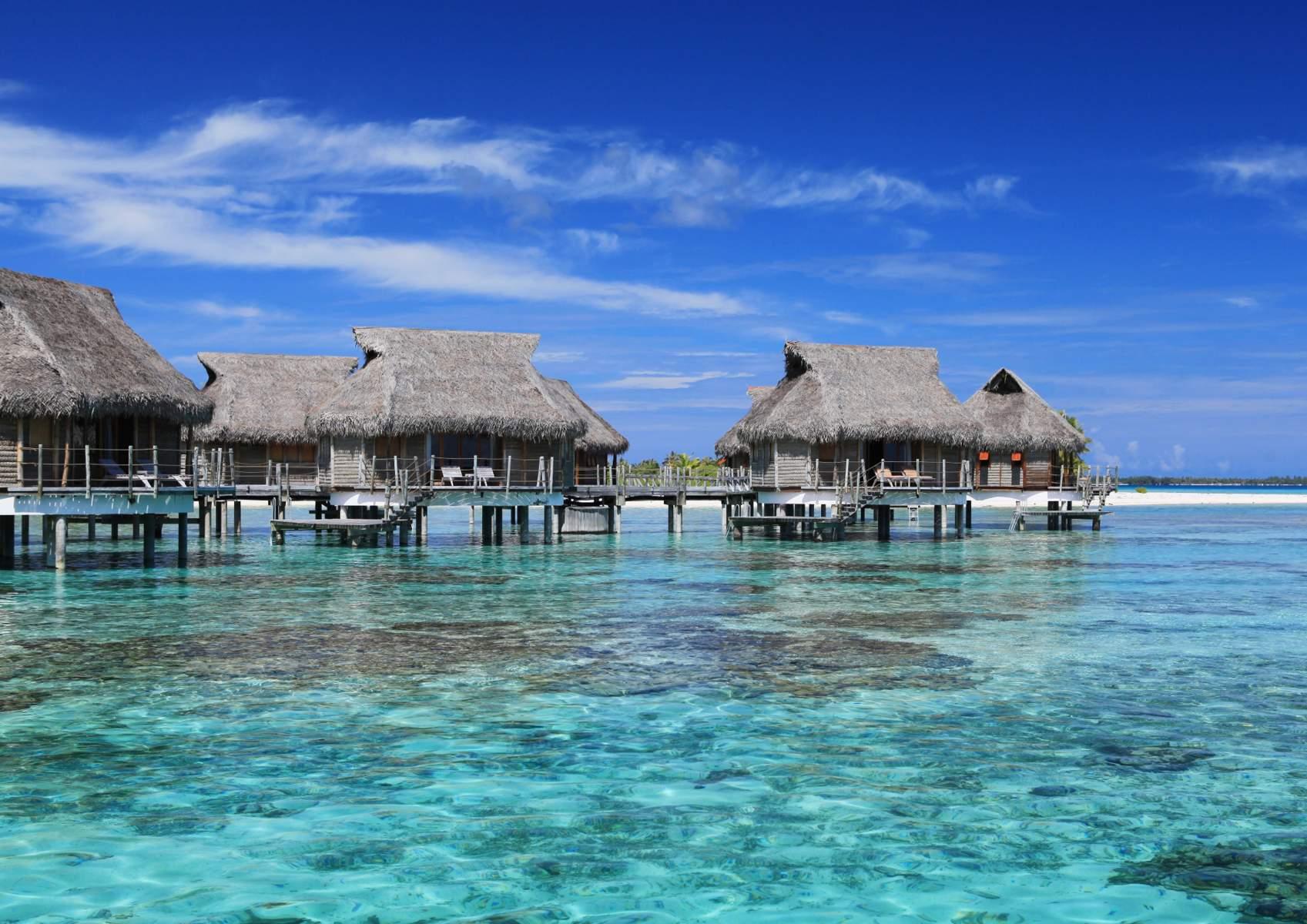 Accomodation Tikehau Pearl Beach Resort  Spa