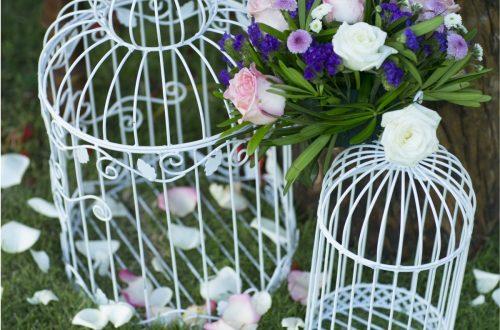Fairy-garden-3
