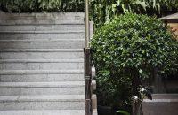 Vertical Garden (18)