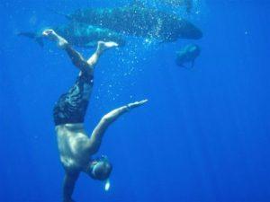 Tikehau_pearl_beach_resort_diving_3