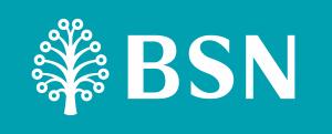 BSN New Logo 2015 - PANTONE 320 C
