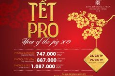 TẾT PRO – YEAR OF THE PIG 2019